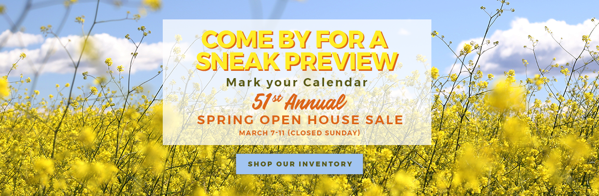 CSRA Camperland_Spring Sale Homepage Banner_March19.png
